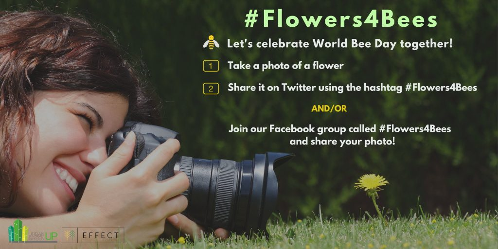 Join our campaign, and raise awareness on the importance of bees